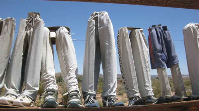 Joshua Tree 2010 120pants