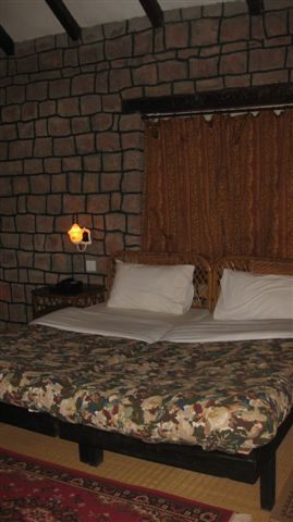 My bedroom at the Tiger Reserve. One night I discovered a gekko and the next, a frog and many spider friends.