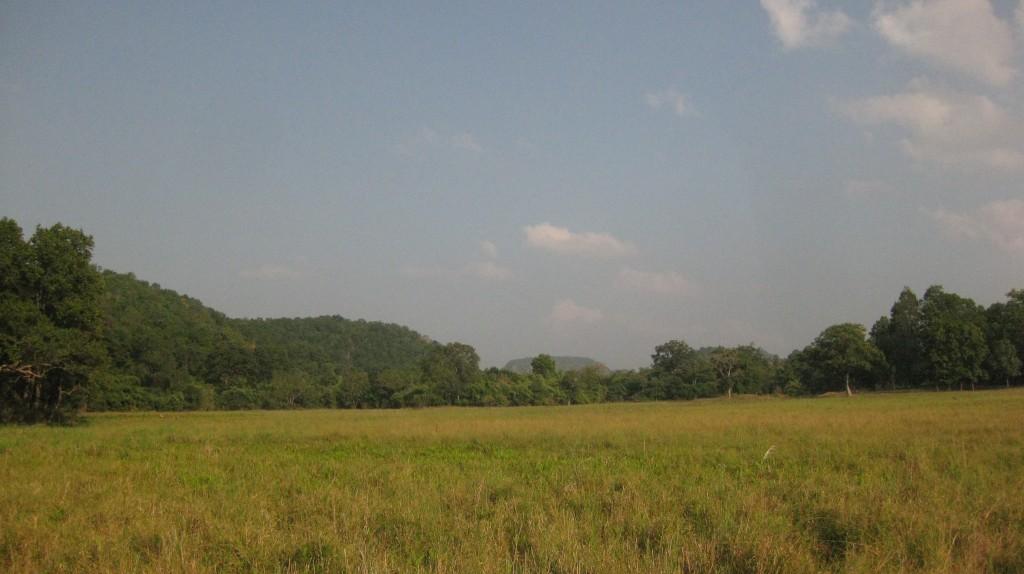 India 2010 399 - Copy