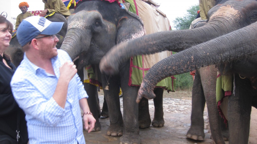 When Elephants Attack! (I later pressed charges)