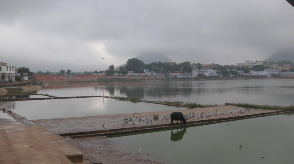 India 2010 623