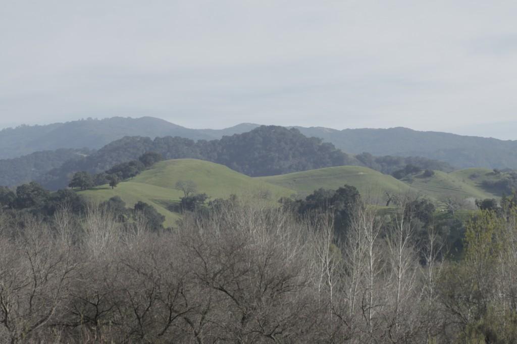 Santa Ynez 2011 011